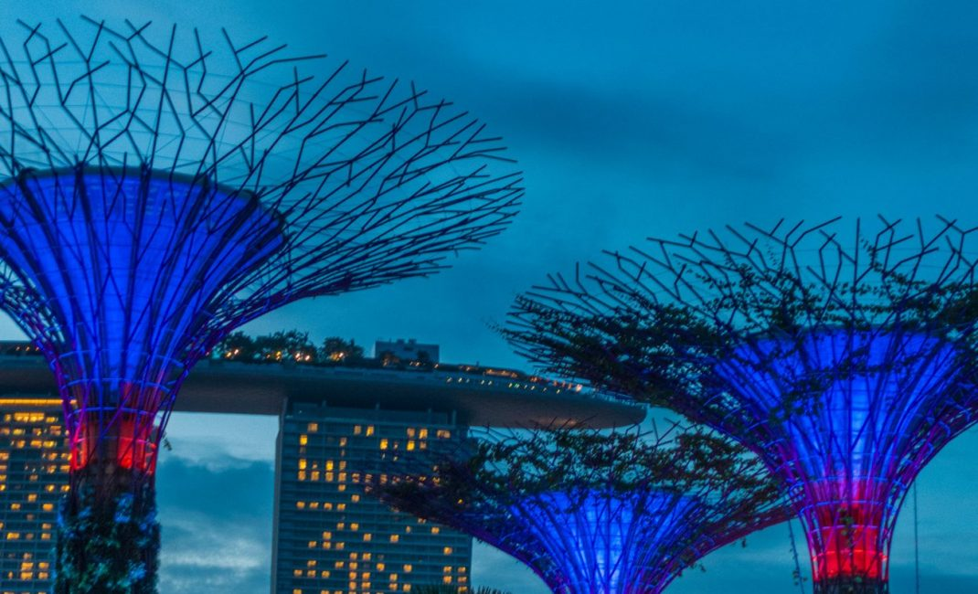7 - Singapore - Gardens by the Bay