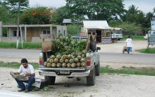 7. Belize - ananasverkoop - streetfood