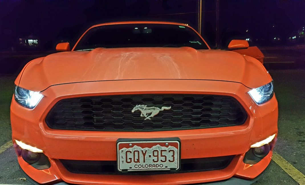 1 Mustang Front