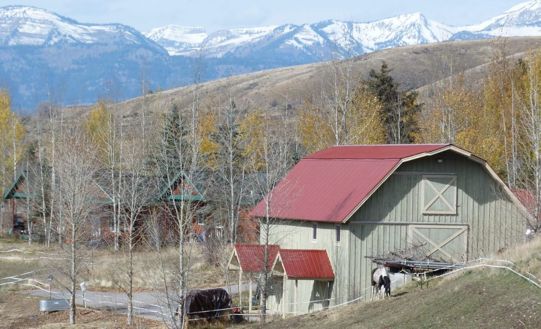 65 Varia Farm Rockies