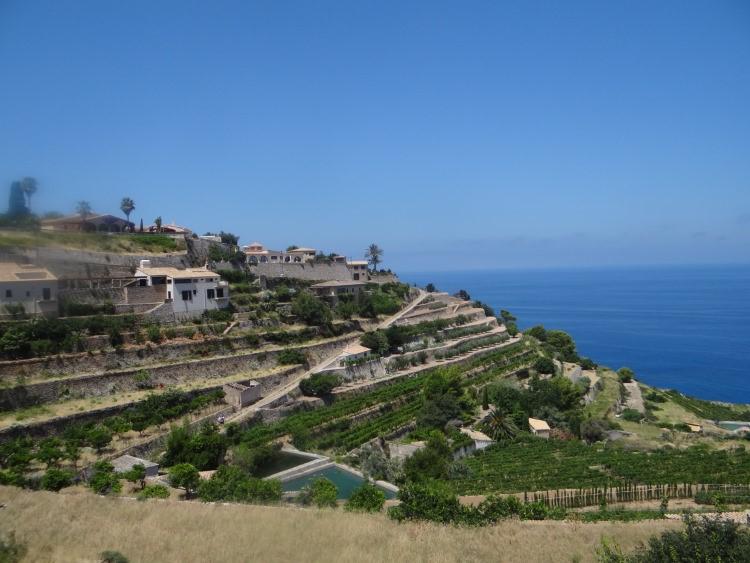 Mallorca en zijn parels in het Tramuntanagebergte foto 7