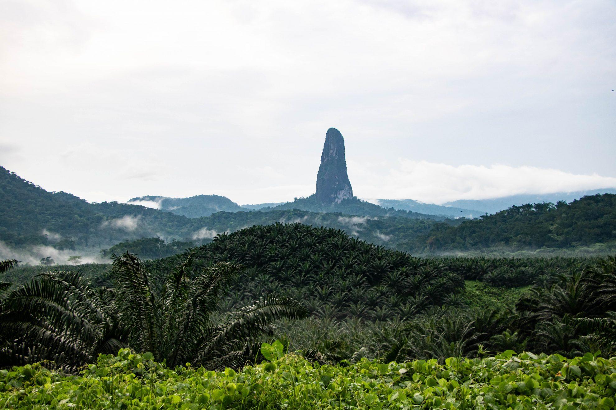 Sao Tome: een paradijs voor foodies